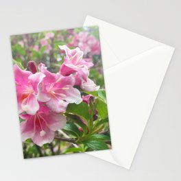 454 - Flowers Stationery Cards