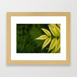 Plant Patterns - Leafy Greens Framed Art Print