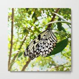 Butterfly_Black & White Metal Print