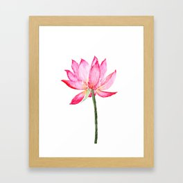 pink lotus flower Framed Art Print