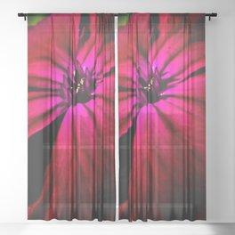 Purple Wild Flower Sheer Curtain