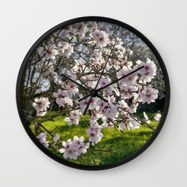 Almond trees in flower in Portugal, the Algarve Wall Clock