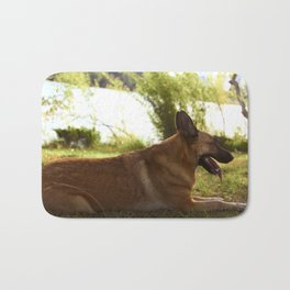 Beautiful brown Belgian dog sitting on grass Bath Mat