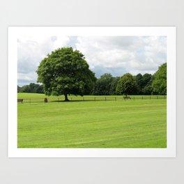 Estate Tree Art Print