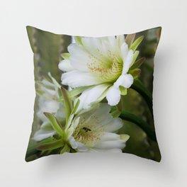Cereus Morning  Throw Pillow