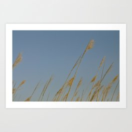 On Golden Arms Art Print