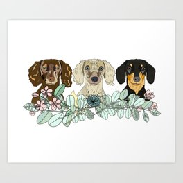 Triple Dachshunds Floral Art Print