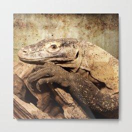 Komodo dragon- Wild reptile - predator - Animal Metal Print