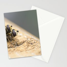 Mating Insects Stationery Cards