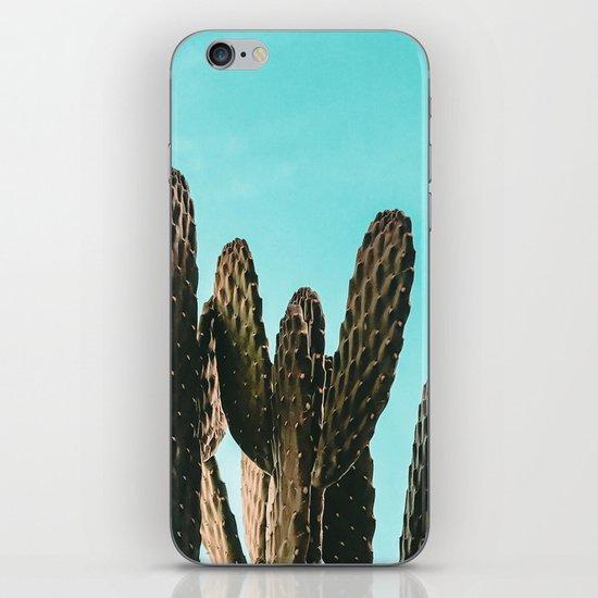 Cactus Photography Print {1 of 3} | Teal Succulent Plant Nature Western Desert Plants  Design Decor by palmtreeprints