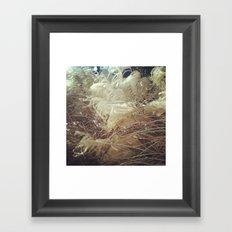 Fancyplants Framed Art Print