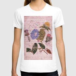 Botanical Study #4, Vintage Botanical Illustration Collage Art T-shirt