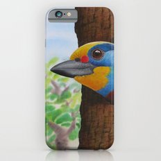 Beautiful Bird Slim Case iPhone 6s