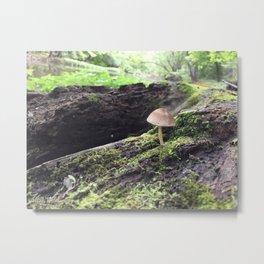 Lilliput Metal Print