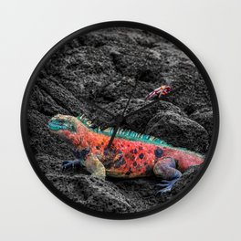 Christmas Iguana in the Galapagos Wall Clock