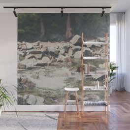 Lake Tahoe mountain river photograph Wall Mural