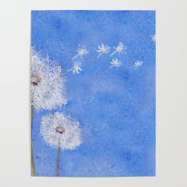 flying dandelion watercolor painting Poster