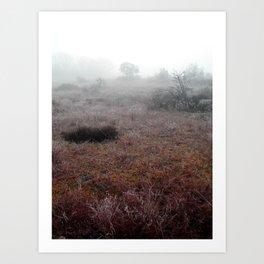 Provence 2 Art Print