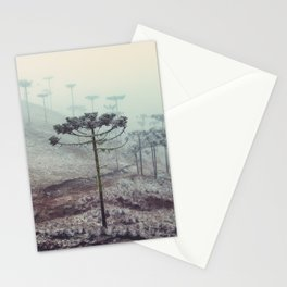 Winter Araucaria Stationery Cards