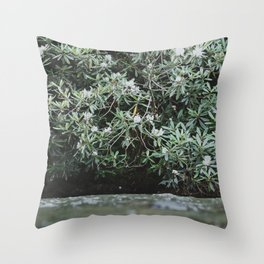 Streams of Living Water 2 Throw Pillow