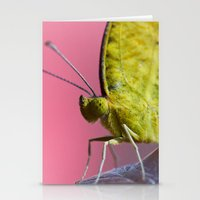 insect Stationery Cards featuring Insect by TJAguilar Photos