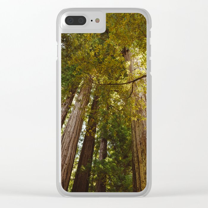 Redwood Forest Clear iPhone Case