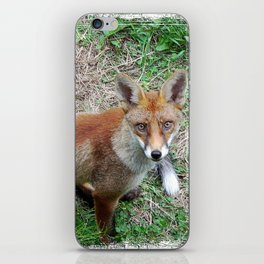 'Watchin' iPhone Skin