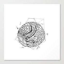 Geometric Season1:10 Pangolin Canvas Print