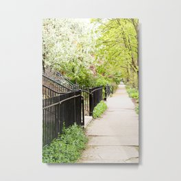 Another Day in the Neighborhood Metal Print