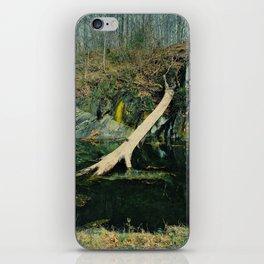 Fallen Tree iPhone Skin