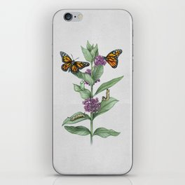 Monarch Butterfly Life Cycle iPhone Skin