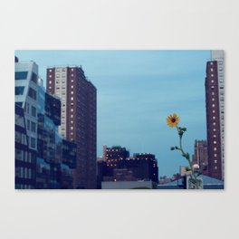 Growth Canvas Print