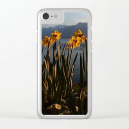Swiss Riviera II Clear iPhone Case