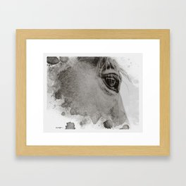 Limited Edition, Rico #1 Framed Art Print