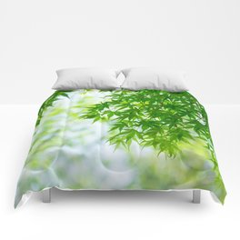 Green leaves of Japanese maple Comforters