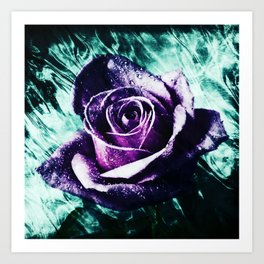 purple violet rose Art Print