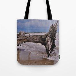 Drift Wood Beach 6 Tote Bag
