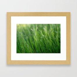 Green, green, grass of home Framed Art Print
