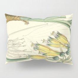4952 Pillow Sham