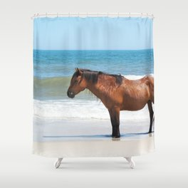 Watercolor Horse 50, Assateague Pony, Assateague, Maryland, Solitary Stand Shower Curtain