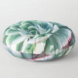 Pastel Succulent 2 Floor Pillow