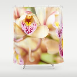 Pink and yellow orchids Shower Curtain