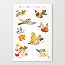 Autumn Birds of the East Coast Canvas Print