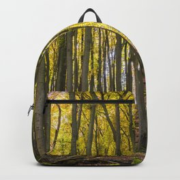 Autumnal Forest Backpack