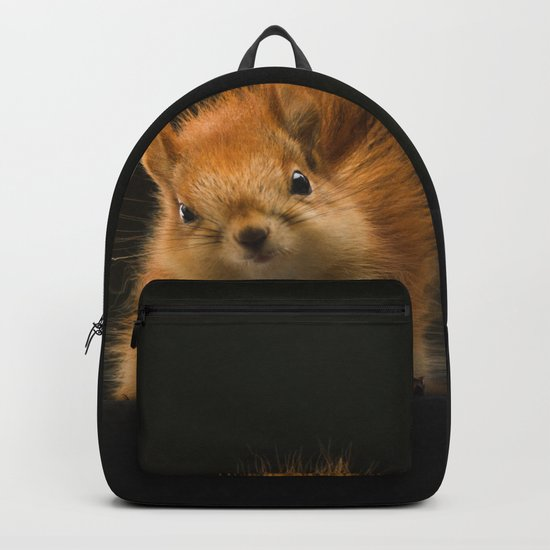 squirrel in the dark Backpack