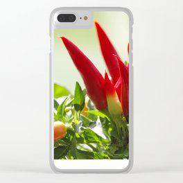 Chili peppers on the vine Clear iPhone Case