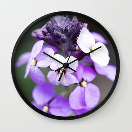Dame's Rocket Flowering Wall Clock