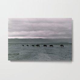 #9 Tanzania. Wildebeests. Metal Print