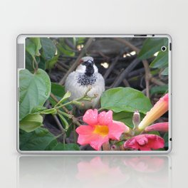 Sparrow in the Vine Laptop & iPad Skin