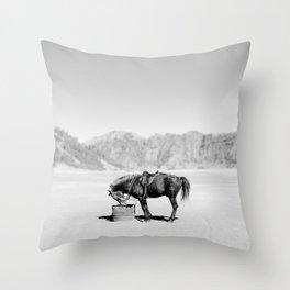Horse Bromo Throw Pillow